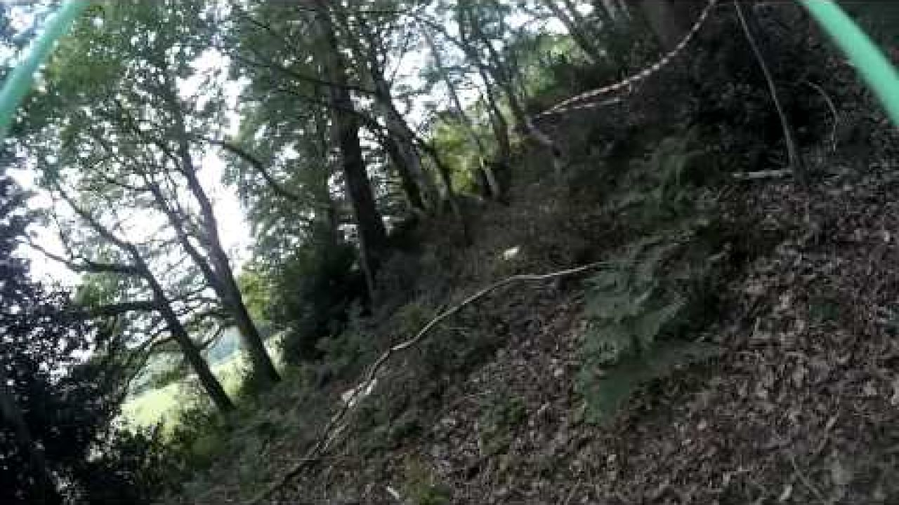 Winning lap from the UK FPV League Forest Time Trial Course - 24/May/2015